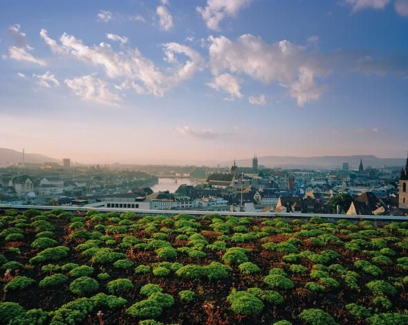 Green Roofs Get Lift as France Makes Them Chic