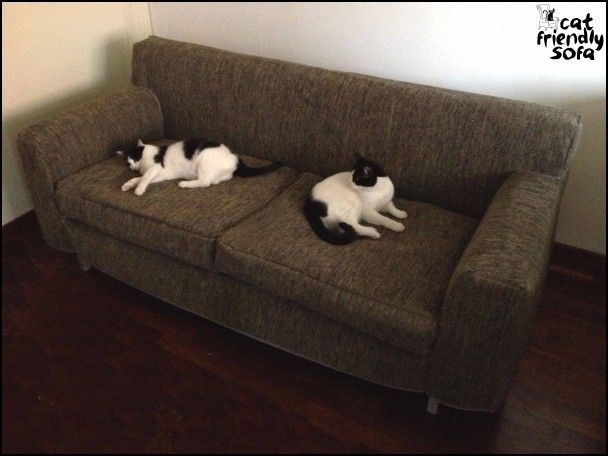 Cat Proof Couch Cover