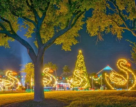 7 Christmas Events You Must Do In Houston Tx Moody Gardens Festival Lights Nature Tourism