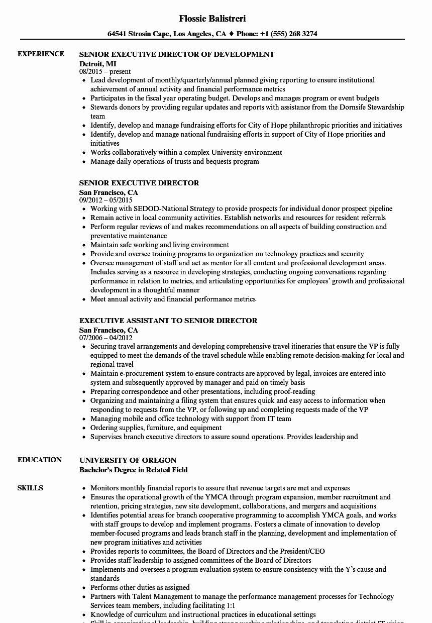 27+ Senior business analyst resume examples Examples