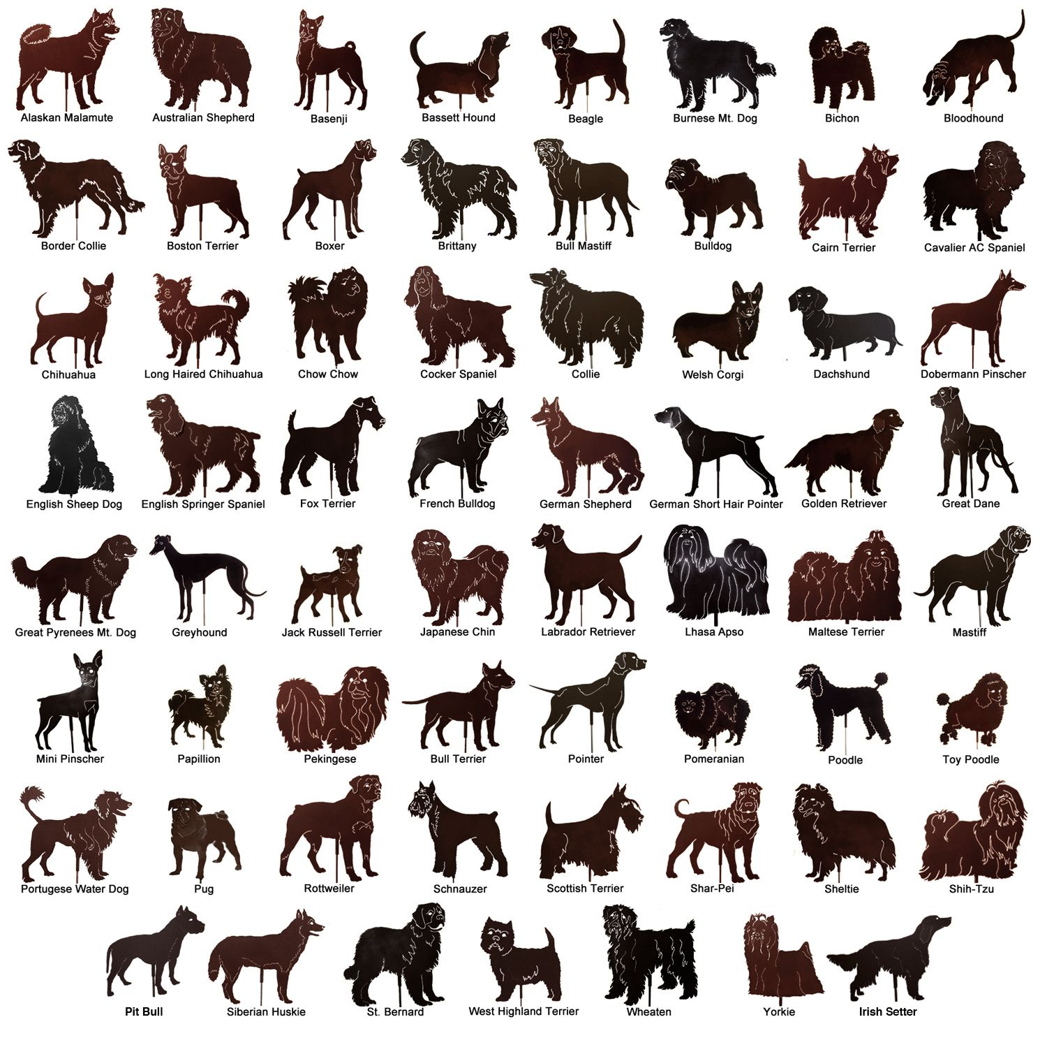 Dog Breeds List of Dog Breeds A-Z, Pictures