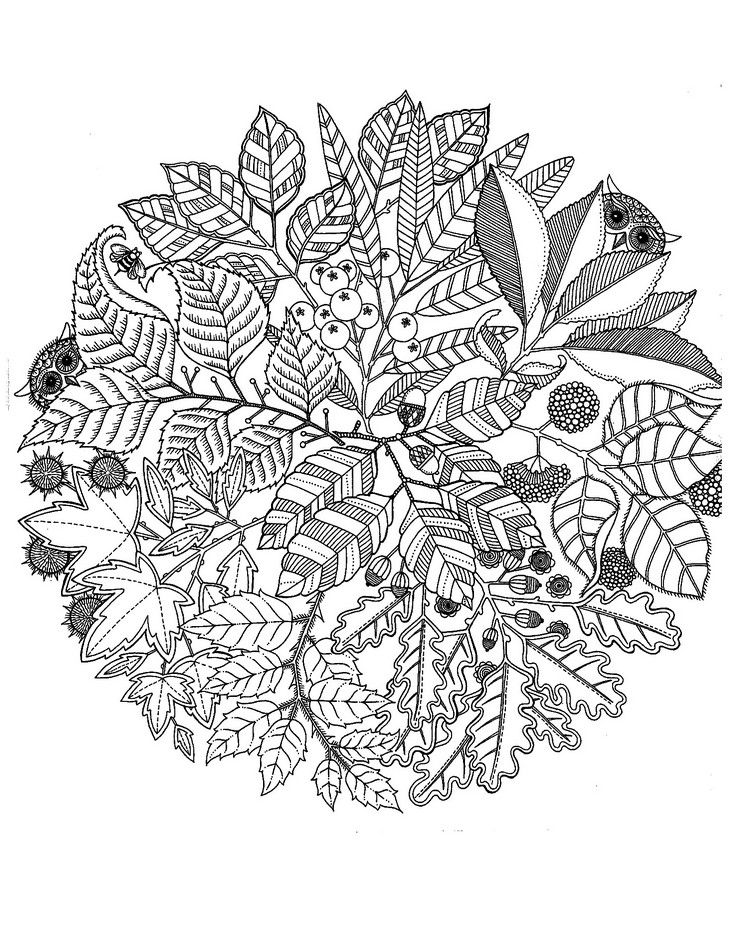 Herbst Mandalas Kinder Blaetter Beeren Eulen Basteln Mit Kindern