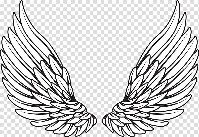 Pair Of White Wings Illustration Drawing Wings Angel Transparent Background Png Clipart In 2020 Angel Wings Drawing Wings Drawing Neck Tattoo