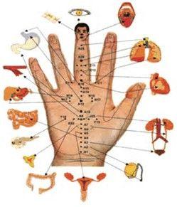 Resultado De Imagen De Mapa De Acupuntura Hand Therapy Acupuncture Alternative Medicine