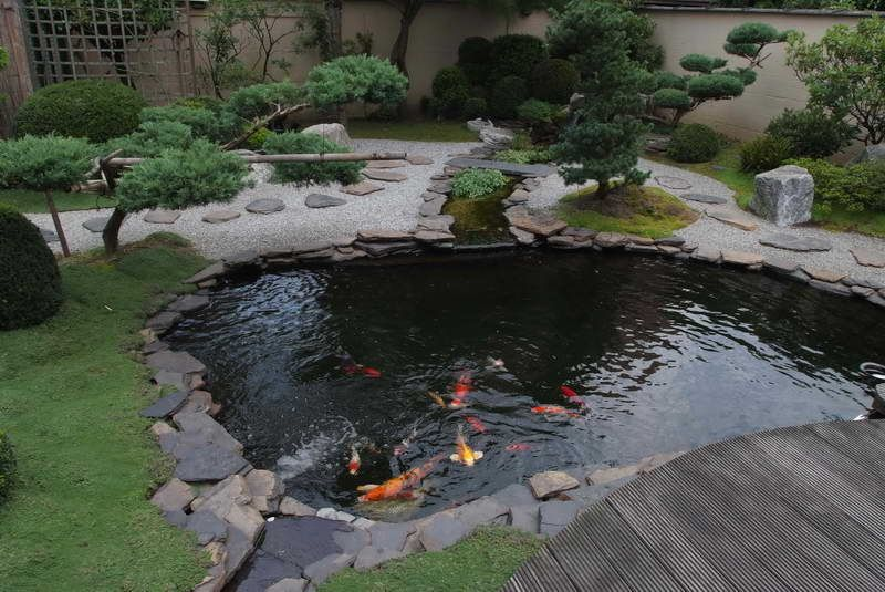 Fish pond design ideas pictures with japanese koi fish for Japanese garden with koi pond