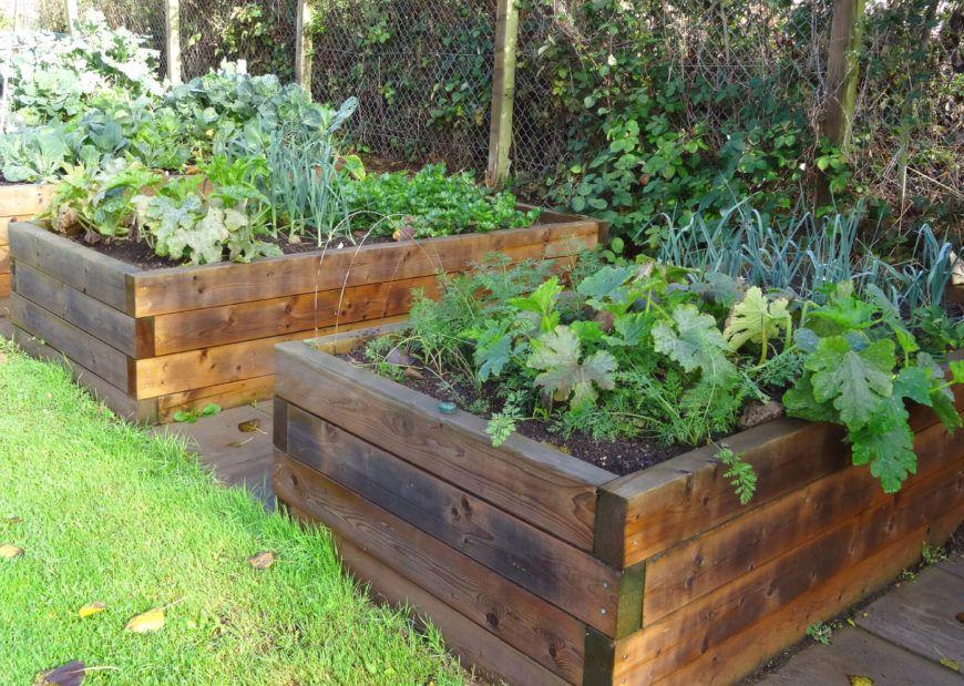 41 Backyard Raised Bed Garden Ideas Garden beds, Raised