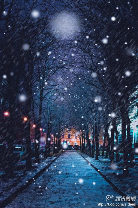 When They Are Young Choose A International Long Distance Travel On The Road To Watch The World See The Iphone Wallpaper Winter Winter Pictures Winter Photos Christmas winter night wallpaper iphone