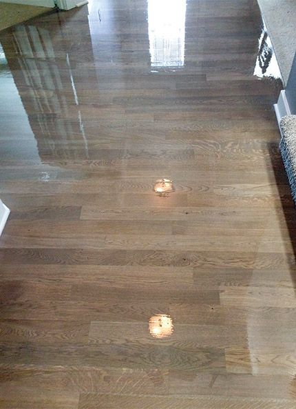 Gray Stain White Oak  WaterBased Finish Can You Avoid