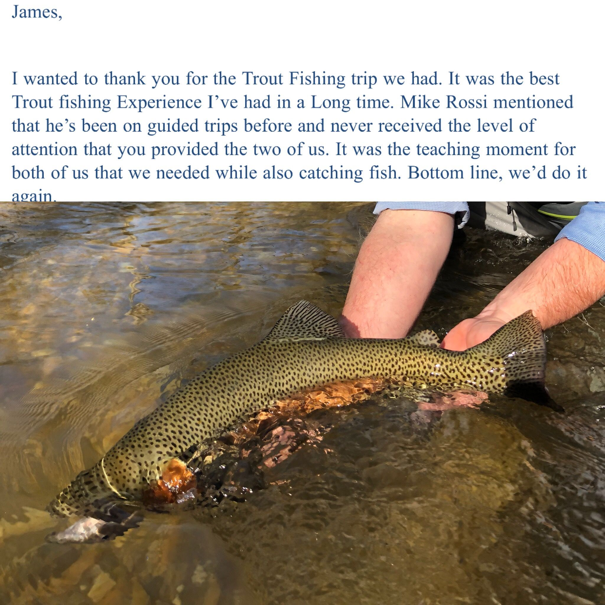 Pin By The Field And Fly On Fly Fishing Trips Fishing Trip Trout Fishing Fish