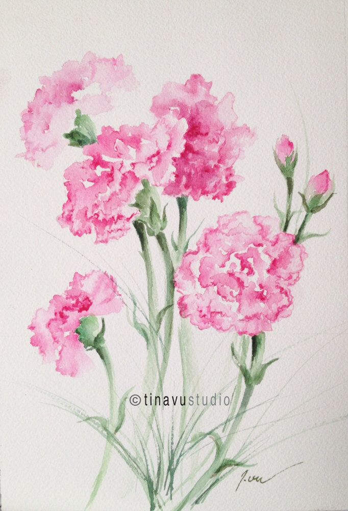 "January birthday flowers. Pink carnations. Original watercolor paintings. Original flowers. Floral watercolor. 7"" x 10"" by TinaVuStudio on Etsy https://www.etsy.com/listing/261892279/january-birthday-flowers-pink-carnations"