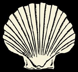 Scallop Shell Clip Arts Free Clipart Clipartlogo Art Shell Drawing Seashell Clipart
