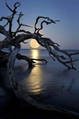 12. Playing Hide and Seek? Really !! | 21 Breathtaking Images Of Moon That Will Make You Think If It's Real Or Not