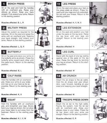 Home gym exercises google search sports  amp outdoors fitness also weider exercise chart weight machine workouts pinterest rh