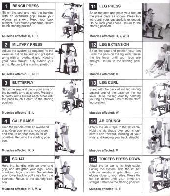 Marcy mwm exercise chart home gym also denmarpulsar rh