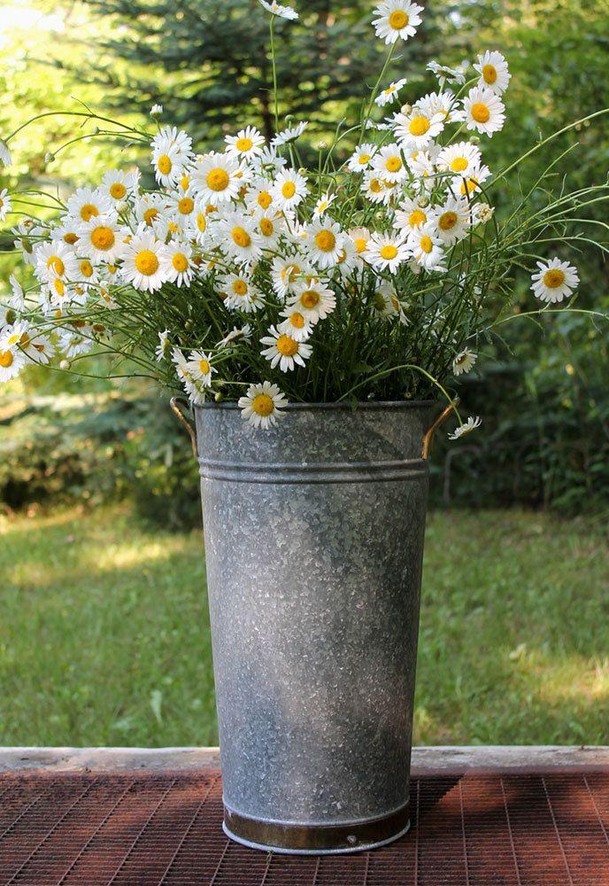 Galvanized french flower buckets vintage 17 galvanized for Large galvanized buckets for flowers