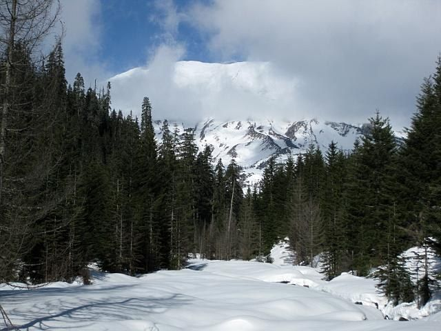 Stone Mountain Trail Elevation Gain : June lake snowshoe mt st helens region miles ft