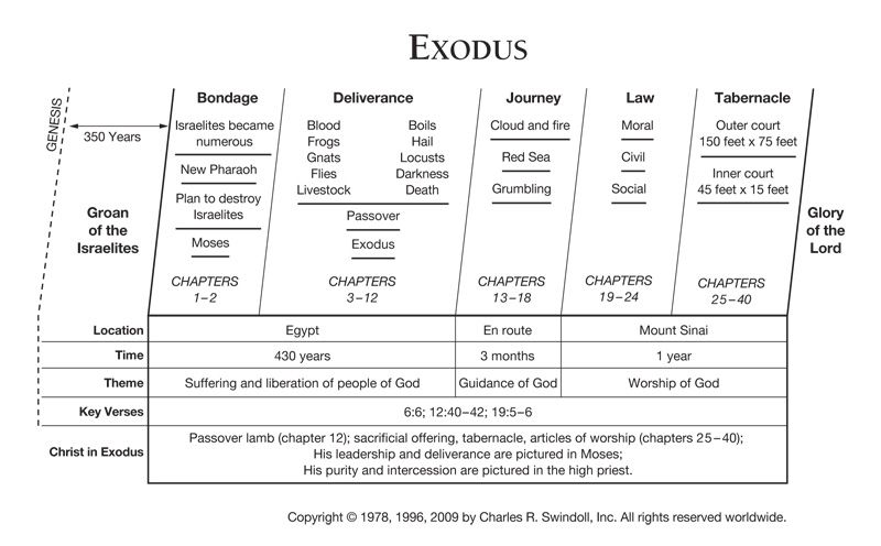an overview of the spiritual leadership of moses in the bible Introduction  their leader was a prophet called moses  according to the bible,  the descendants of jacob had lived in egypt for  there's legacy within  christian theology of looking at the laws in the bible and thinking that.