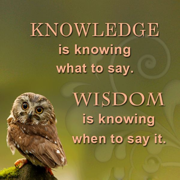 Quotes On Wisdom Mary A Pérez Marysreflection  Twitter  Inspiration & Insight .