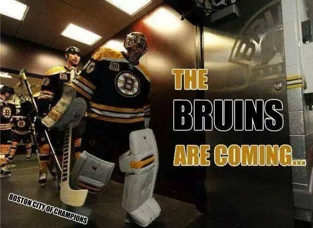 The Bruins are coming!
