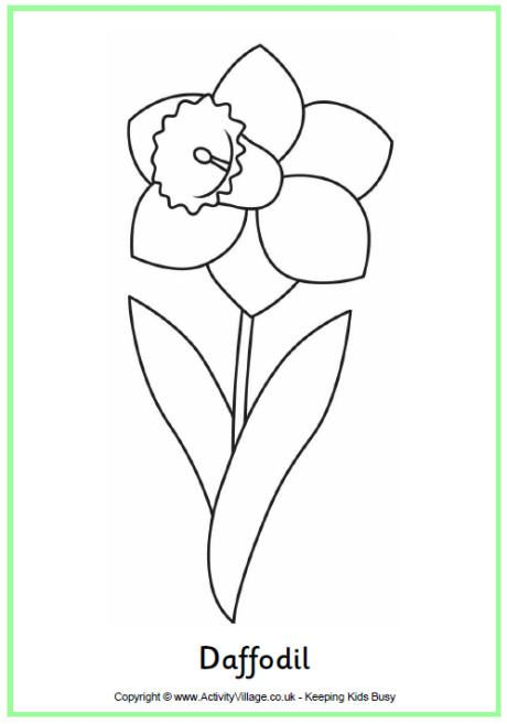 daffodil colouring page coloring pages spring coloring pages rh pinterest com