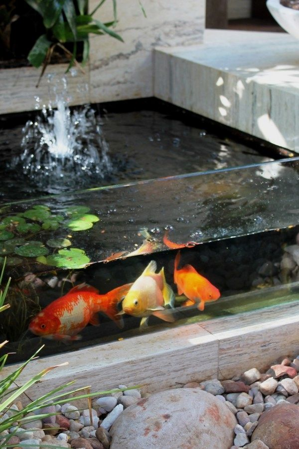 12 Beautiful DIY Koi Pond Ideas You Can Build Yourself To ...