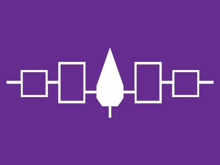 Iroquois flag (First Nation indigenous people)   Ace of ...