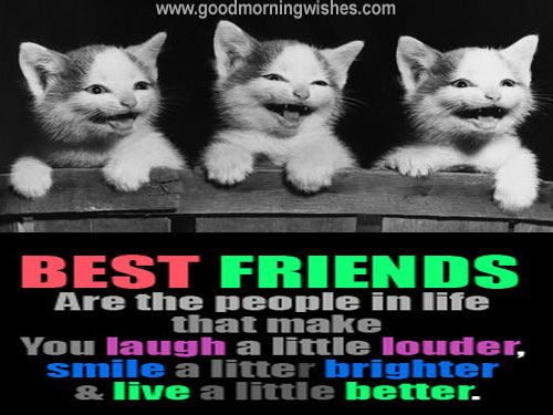 Funny Friendship Messages - Wishes - Quotes - Sms - Pictures- Images