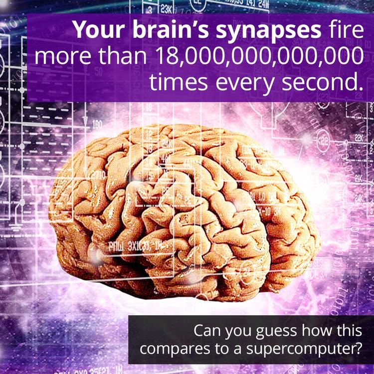 Human Brain How Do We Love Thee Let Us Count The Ways Your Brain Has About 85 Billion Neurons Those Neuro Human Brain Simulation Hypothesis Neuropsychology