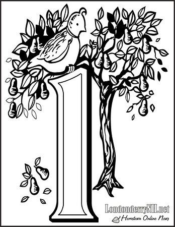 Partridge In A Pear Tree Coloring Page All Twelve Days Of Christmas