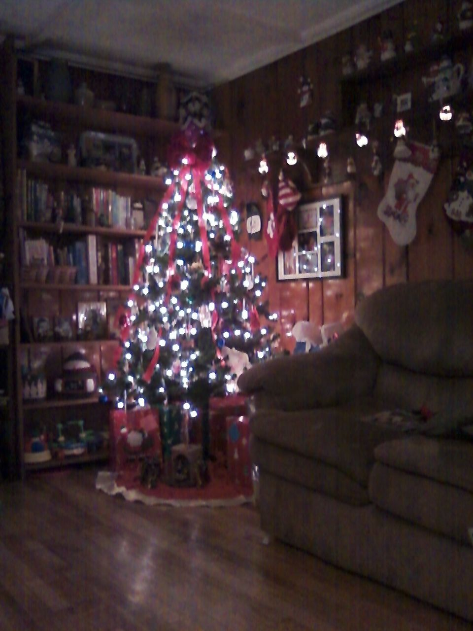 Christmas last year at our home.