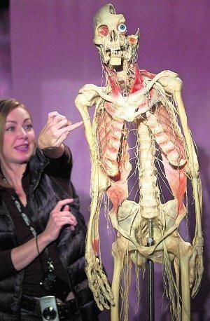 Clases de anatomía con cuerpos reales | Physical Education ...