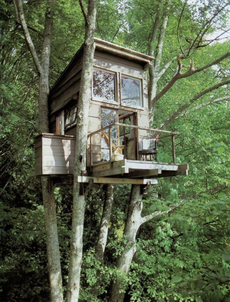 tumblr lm2gw8eti61qgkosvo1 500 tree houses cool tree houses rh pinterest com