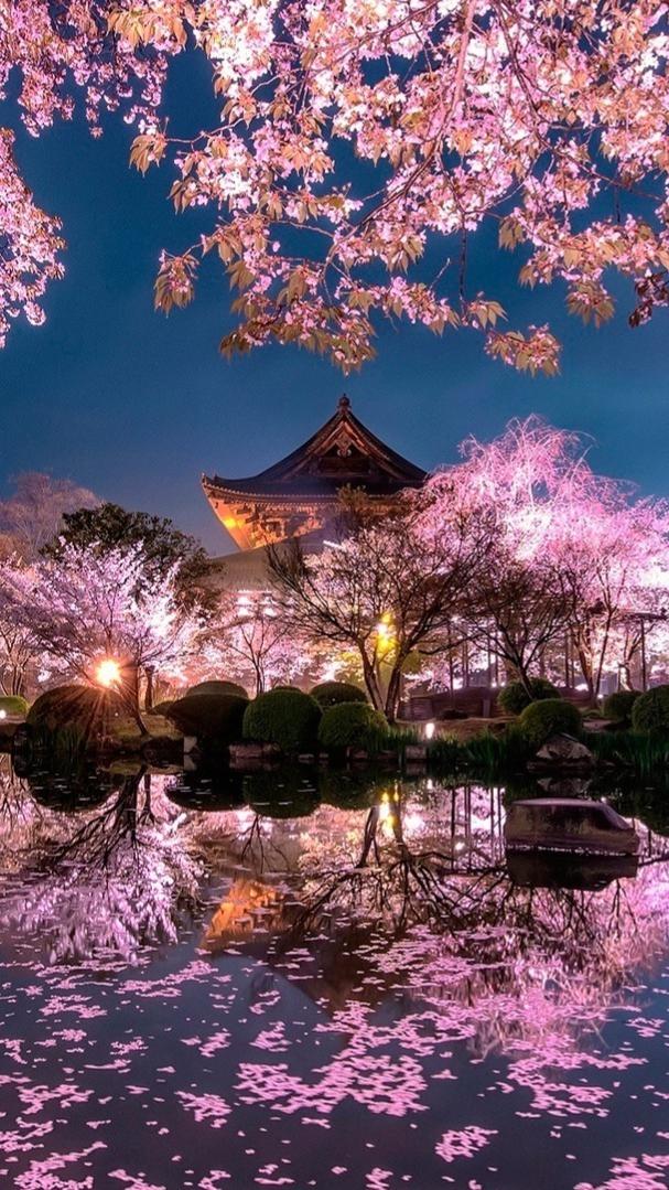 Nature Japon   Japan