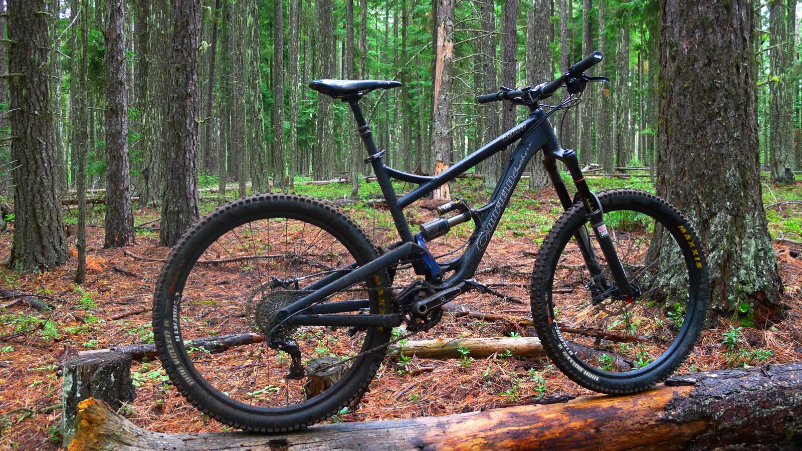 A Canfield Balance Balancing In The Woods Of Oregon The Guys At