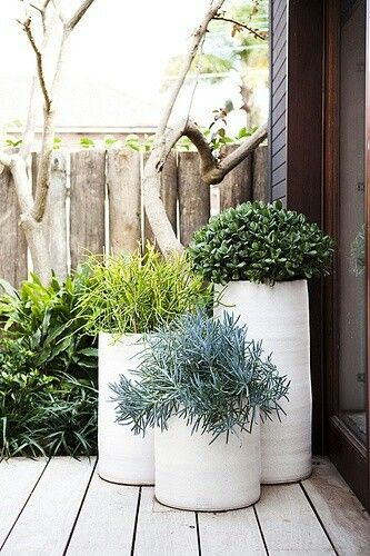Planters. Round. White. Varying heights | Scottsdale home ...