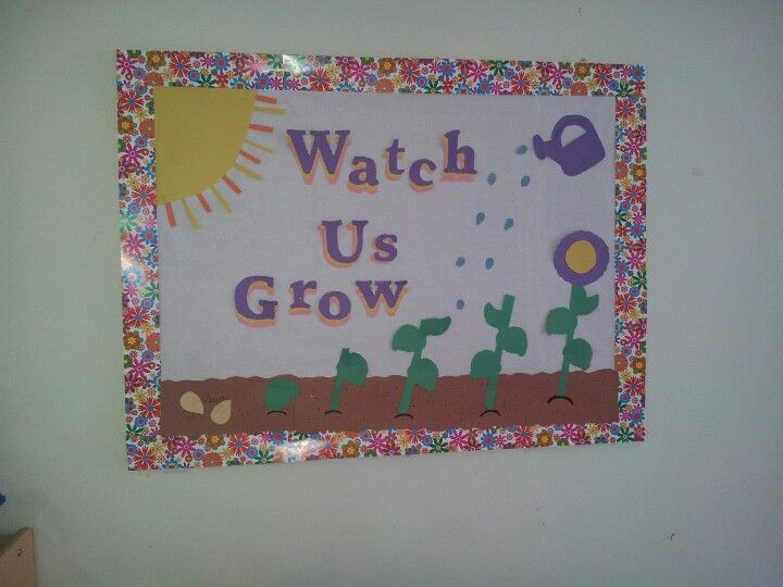 bulletin board another great idea for a nature themed month look rh pinterest com