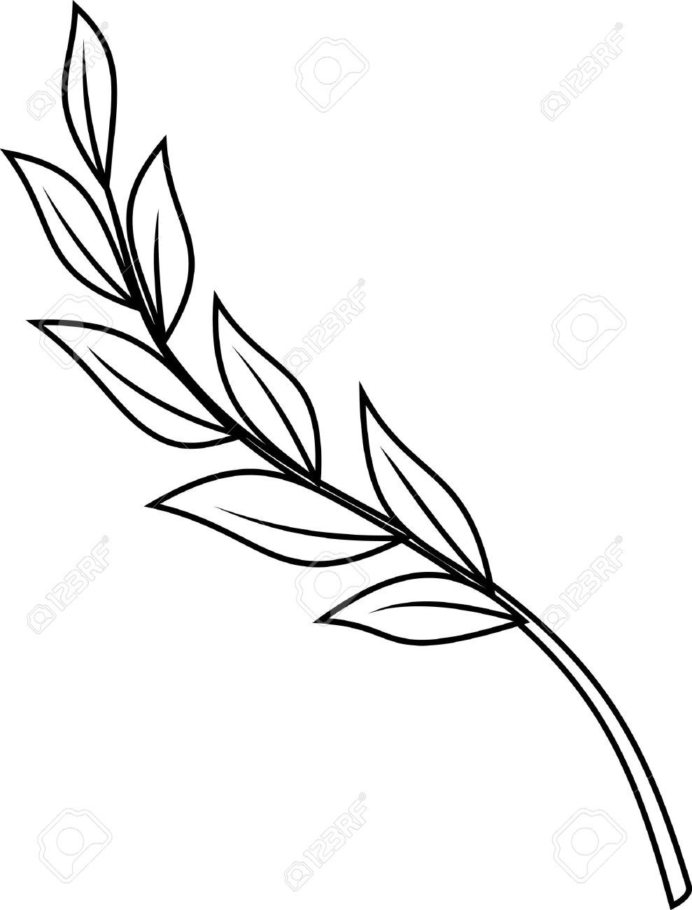 6697fd8e4715c Laurel Branch Stock Vector Illustration And Royalty Free Laurel ...