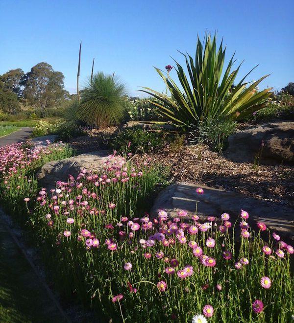 0a76f133b809e5a4093821473887d85f - Where Is Mount Annan Botanic Gardens