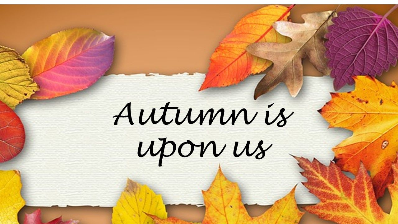 Autumn Anniversary wishes quotes