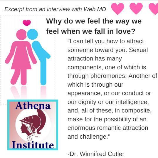 Pheromones human attraction