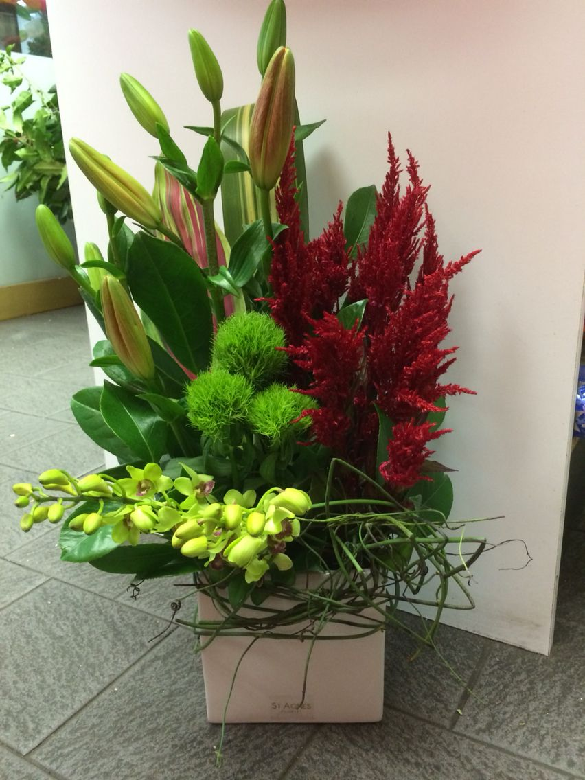 red celosia green trick asiatic lillies and singapore orchids rh pinterest com
