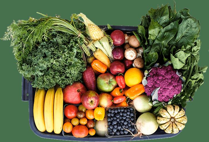 Inicio Merkaorganico Alimentos Organicos De Calidad Alimentos Organicos Alimentos Alimentos Saludables