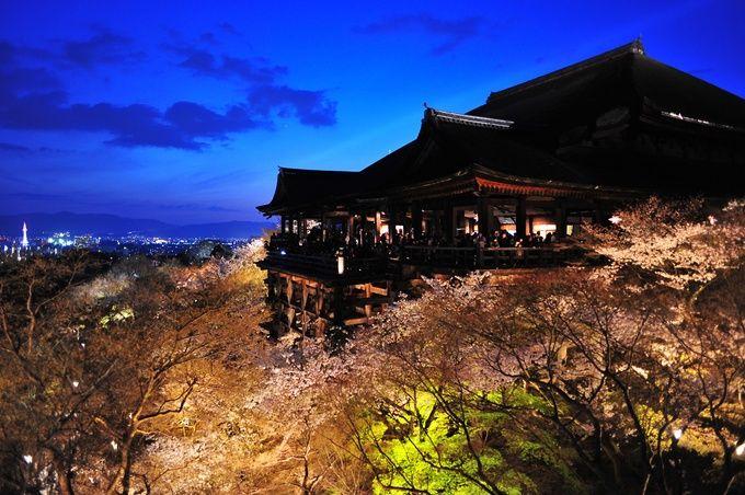 ライトアップで映し出される清水寺もまた見ごたえがあります!