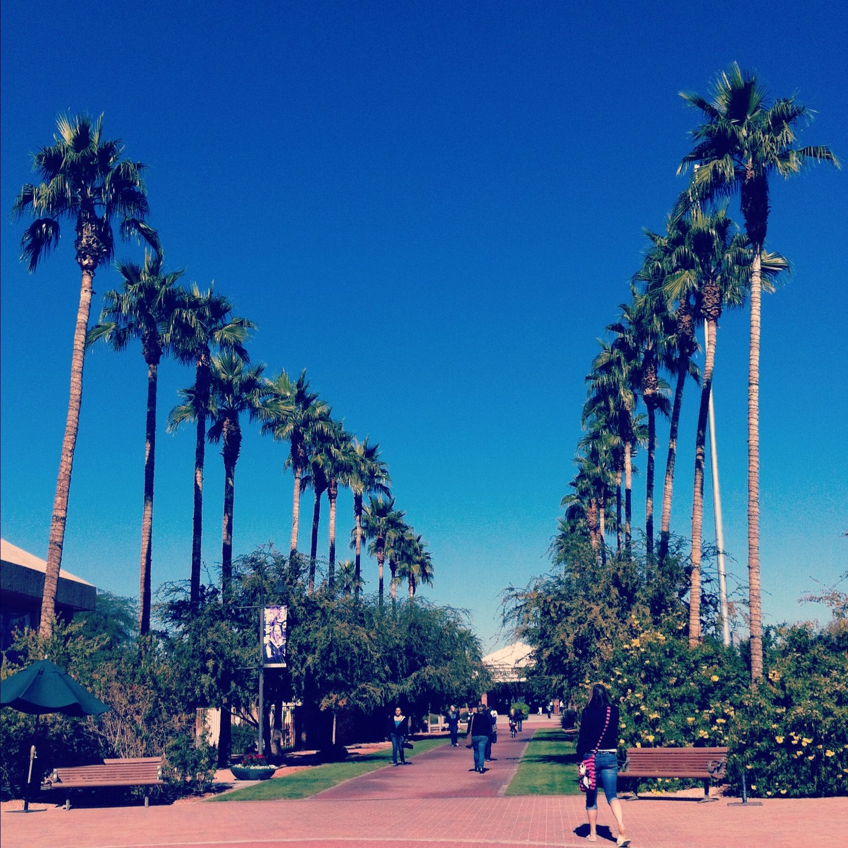 Gcu Campus Scholarships For College Grand Canyon