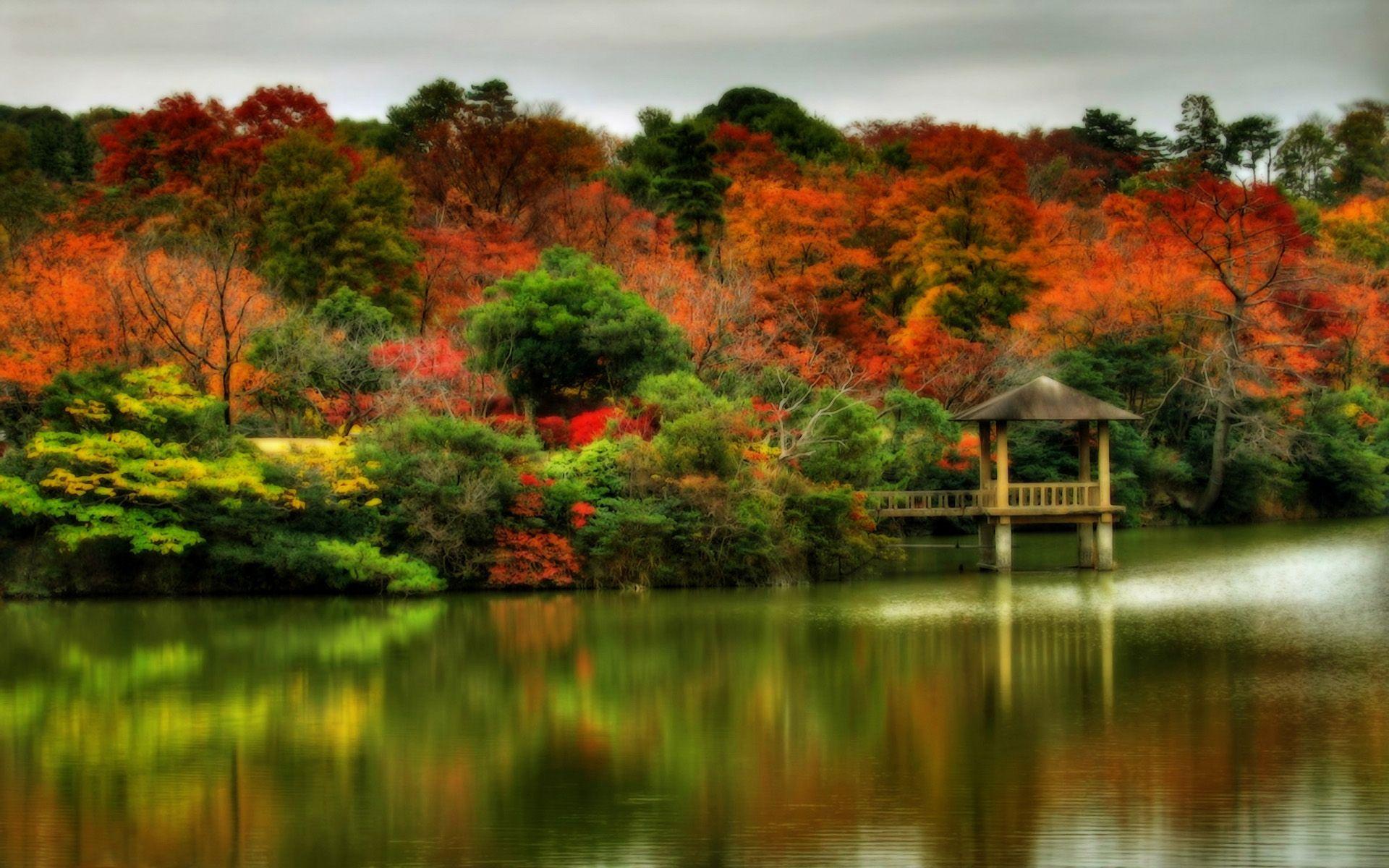 Beautiful Scenes For Desktop Beautiful Autumn Scenes 1920x1200 Wallpapers 1920x1200 Wallpapers Scenery Wallpaper Autumn Scenery Fall Scenery Pictures