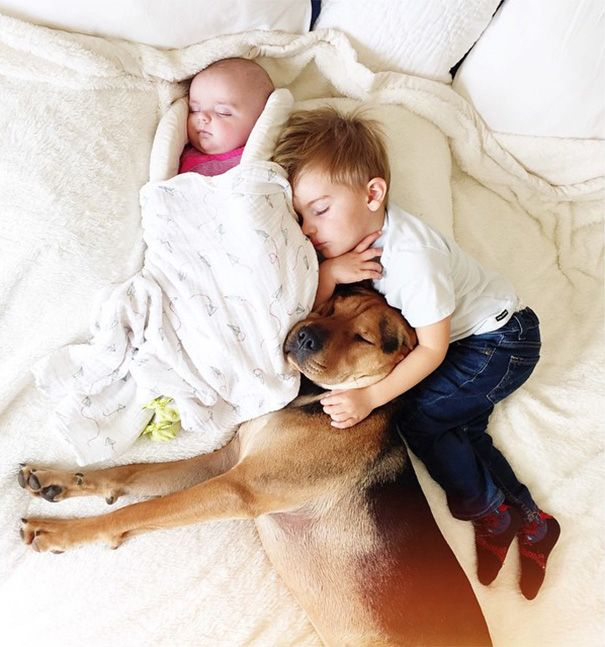 Famous Napping Boy And Puppy Duo Gets A New Nap Friend A Baby - Toddler naps with puppy