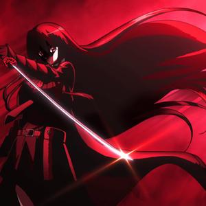 Akame/Anime