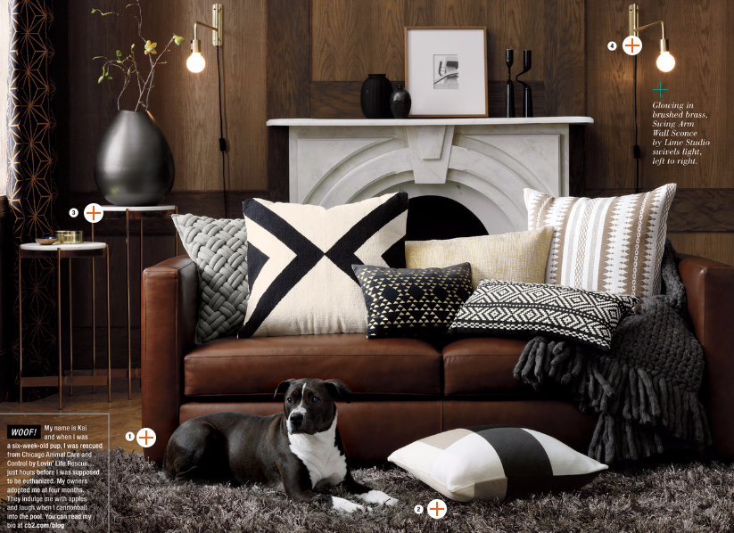 Cognac Couch With Black And White Cushions Cb2 Fall 2015 Brown Living Room Decor Brown Couch Living Room Brown Living Room