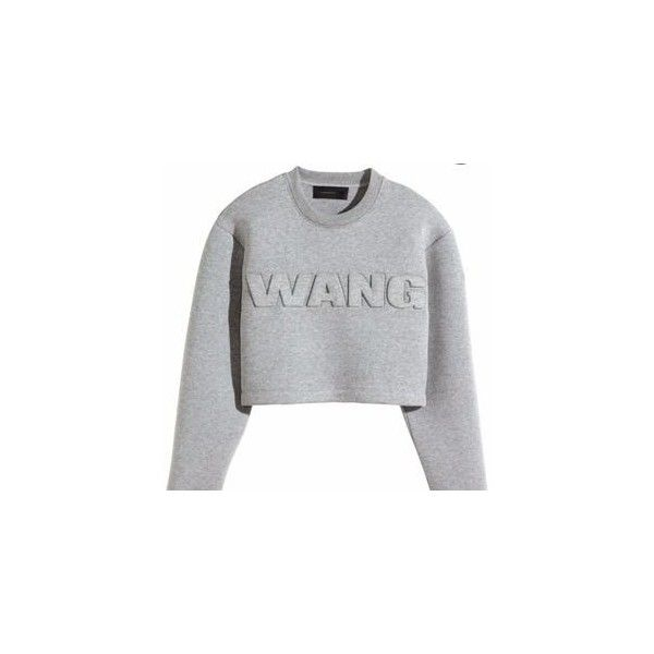 Pre-owned Alexander Wang Top ($251) ❤ liked on Polyvore featuring tops, sweaters, jumpers, clothes - tops, apparel & accessories, shirts & tops, neoprene crop top, crop shirt, shirt tops and neoprene shirt