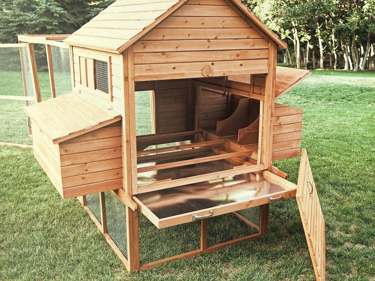 12 easy chicken coop plans you can try for your backyard chickens rh pinterest com